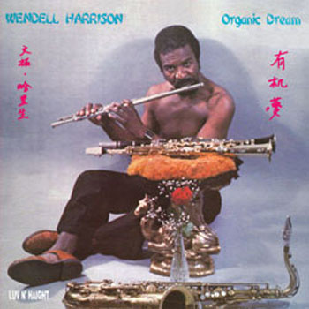 Yes, I would climb any mountain if I knew, upon reaching the summit, I would be greeted with the scene featured in the album art for Wendell Harrison's Organic Dream and accompanying flautistry.