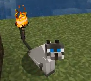 ^ not sure if its Cryovolcano's Melvin, but it sure is a Melvin the cat.