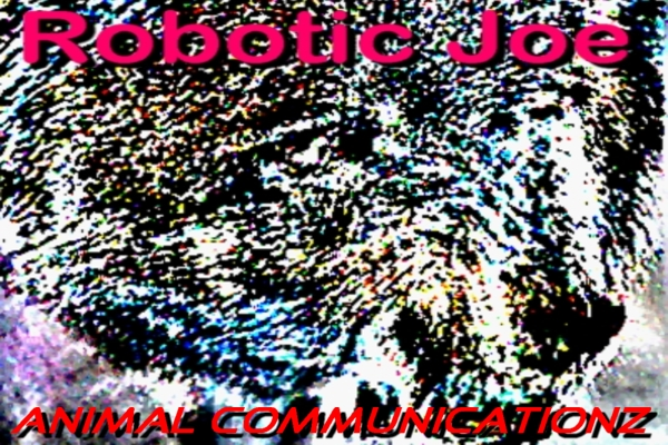 [proc411]-00-Robotic_Joe_-_Animal_Communicationz_Cover_B