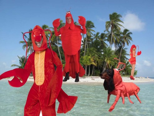 ^ a rare picture of Lobster Island and some Lobsters