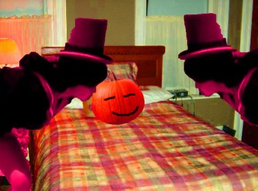 ^ Petunia-Liebling MacPumpkin decides here if its time for the pumkin to wake up or not