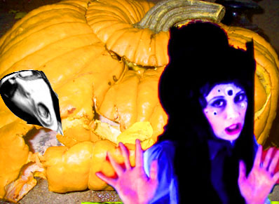 ^ our pumpkin, inside a pumpkin, located in another pumpkin is rotting away! Time to stop the interview!