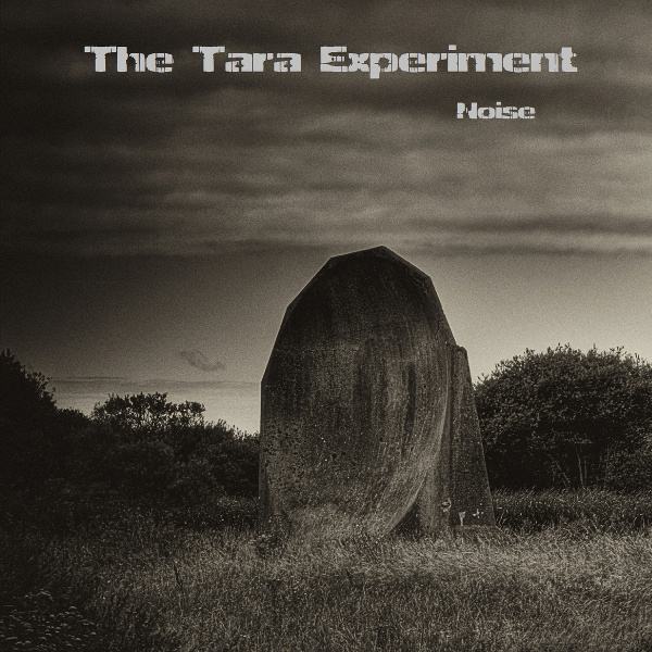 The Tara Experiment - Noise