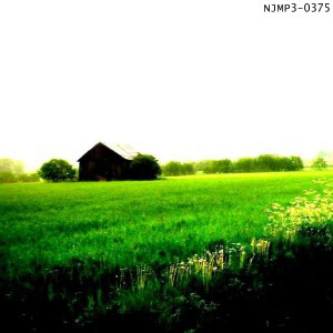 The album art for (Pre)sense, by Step Further Away, evokes for me a sense of isolationism, non-existence in a kind of pastoral bliss surrounded by still nature... the white sky and the shadow of the house in the distance creates a strange foreboding. It is as if the world is at rest.